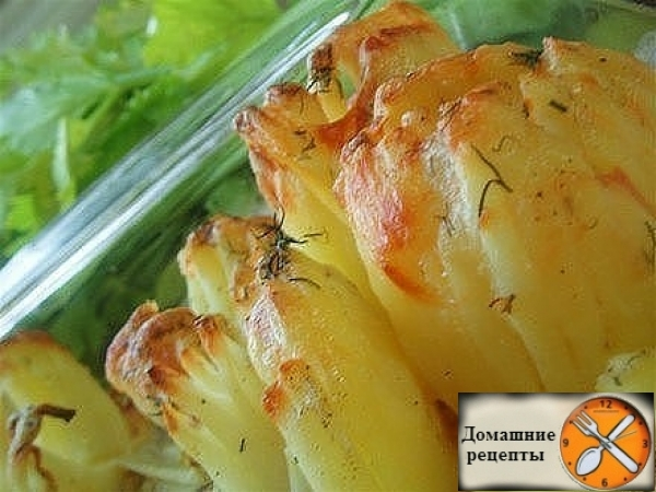 Картофель Дофинэ. дом рецепты